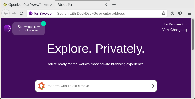профиль tor browser gidra