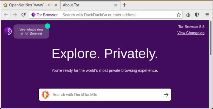 Тор браузер флеш tor browser 6 portable gydra